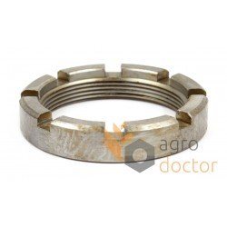 Castellated nut d50mm