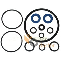 Hydraulic pump repair kit 1810509M91-Massey Ferguson