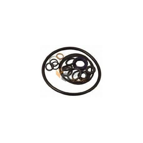 Hydraulic pump repair kit 1635948M92 Massey Ferguson (Bepco) OEM:1635948M92  for Massey Ferguson, Buy in eShop: agrodoctor eu