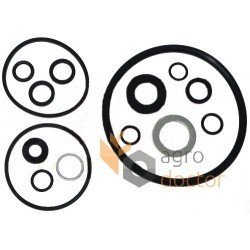 Hydraulic pump repair kit 1635948M92 Massey Ferguson