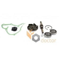 Water pump repair kit engine 30/131-49 3641332M91 Massey Ferguson, [Bepco]