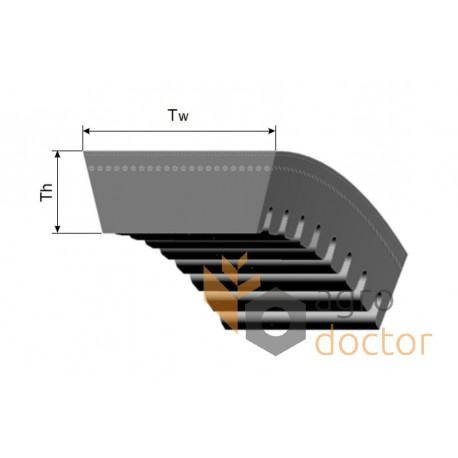 Variable speed belt toothed 670224.1 Claas [Tagex Tagex]